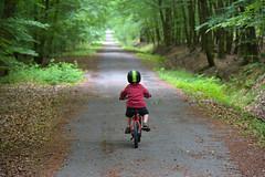 Balade Vélo en forêt (Jean-Yves Ledy) Tags: forêt vélo enfant chemin arbre couleur bois de spa