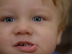 _IMG2688- on1 (douglasjarvis995) Tags: portrait pentax k1 child grandson 100mm macro close face eyes
