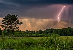 The first thunderstorm of the season (Steppenwolf33) Tags: thunderstorm rain clouds weather sky meadow tree köpenick steppenwolf33
