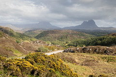 Sutherland (StickyToffeeQueen) Tags: sutherland suilven mountains gorse scenery scotland