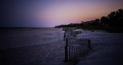 Beach Life (Nick Burwell) Tags: sunset beach sony a7rii bealpha hiltonhead southcarolina lowcountry beachscape landscape travel loxia loxia235