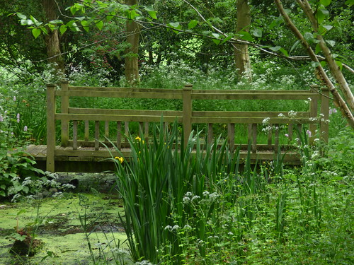 Wollerton Old Hall Garden - The Croft - pond and footbridge