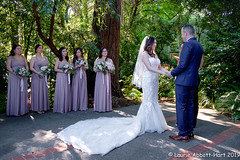20190608Vivian and Jason28163-Edit (Laurie2123) Tags: fujixt2 fujinon1855mm jason laurieabbotthartphotography laurieturnerphotography laurietakespics odc odc2019 ourdailychallenge vivian bride bridesmades groom wedding