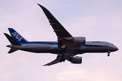 B787 ANA (kasa51) Tags: airplane airliner jetplane tokyo japan b787 ana 飛行機 旅客機