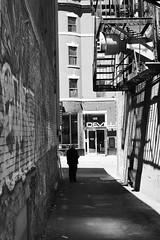 P6100034 (jlborja66) Tags: jaimeborja streetphotography montreal olympus olympuscamera em10mkii mzuiko25mmf18