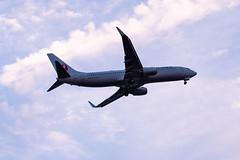 B737 JAL (kasa51) Tags: airplane airliner jetplane sky cloud dusk tokyo japan b737 飛行機 旅客機 空 雲