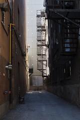 P6100032 (jlborja66) Tags: jaimeborja streetphotography montreal olympus olympuscamera em10mkii mzuiko25mmf18