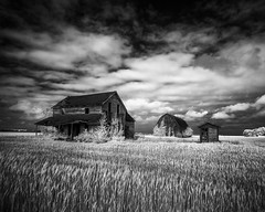 Home on the Plains (Jon Dickson Photography) Tags: infrared nashville illinois abandoned farmhouse barn clouds outhouse bw greatphotographers greaterphotographers