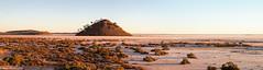 Lake Ballard, Western Australia (BenParkhurst) Tags: landscape benparkhurst menzies outdoor panorama arid saltlake westernaustralia wa lakeballard goldfields morninglight ephemeral location 2019 outback australia