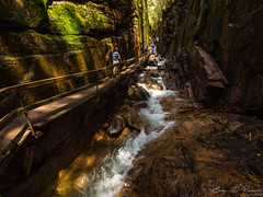 The Wooden Pathway and The Gorge (Brian D' Rozario) Tags: brian19869 briandrozario nikon d750 tokina 1116mm gorge glacier glacial rapid rapids waterfall whitewater narrow pathway tourism theflume franconianotchstatepark franconia whitemountain newhampshire