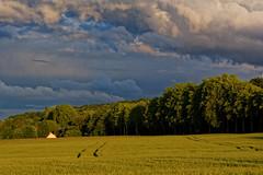 Ciel chargé (Chrisar) Tags: champ nikond750 dxophotolab blé ciel orage angénieux70210