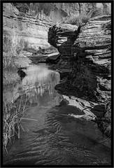 Canyon Creek (jk walser) Tags: bw blackwhite desert fujixt2 jkwalser millcreek moab utah visionarytrio workshop canyons greyscale