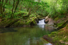 Swimming Pond ((Virginie Le Carré)) Tags: nature paysage paysbasque landscape eau eauvive water vert green mousse moss euskadie france chutes waterfall