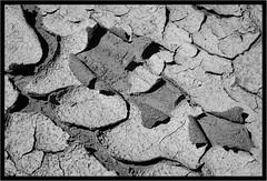 Clear as (Dried) Mud (jk walser) Tags: bw blackwhite desert fujixt2 jkwalser maryjanecanyon moab professorvalley utah canyons greyscale
