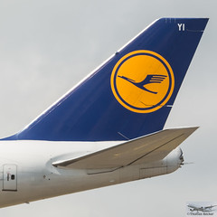 Lufthansa Boeing 747-830 D-ABYI Potsdam (893240) (Thomas Becker) Tags: lufthansa fanhansa siegerflieger dlh boeing b747 747 830 800 748 748i dabyi potsdam staralliance cn37833 ln1475 080513 300513 lh451 losangeles lax fraport flughafen airport aeroport aeropuerto aeroporto fra eddf frankfurt plane spotting aircraft airplane avion aeroplano aereo 飞机 vliegtuig aviao аэроплан samolot flugzeug germany deutschland hessen rheinmain nikon d800 nikkor 70200 vrii fx raw gps aviationphoto cthomasbecker 170720 arrival tailfin geotagged geo:lat=50039523 geo:lon=8596970 aerotagged aero:airline=dlh aero:man=boeing aero:model=747 aero:series=800 aero:tail=dabyi aero:airport=eddf