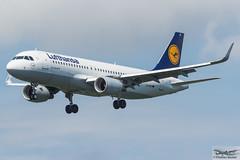 Lufthansa Airbus A320-214(WL) D-AIUI (720270) (Thomas Becker) Tags: lufthansa dlh airbus a320214wl a320214 a320200 a320 a32a 32a daiui staralliance msn6265 080914 davvs 170914 lh839 billund bll fraport flughafen airport aeroport aeropuerto aeroporto fra eddf frankfurt plane spotting aircraft airplane avion aeroplano aereo 飞机 vliegtuig aviao аэроплан samolot flugzeug germany deutschland hessen rheinmain nikon d7200 nikkor 80400g vrii dx raw gps aviationphoto cthomasbecker 170720 arrival geotagged geo:lat=50039523 geo:lon=8596970 aerotagged aero:airline=dlh aero:man=airbus aero:model=a320 aero:series=200 aero:special=wl aero:tail=daiui aero:airport=eddf