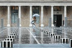 Palais-Royal (erichudson78) Tags: france iledefrance paris1er lepalaisroyal streetphotography scènederue canoneos5d canonef24105mmf4lisusm pluie rain umbrella parapluie cellphone smartphone buren architecture reflets reflection colonnesdeburen