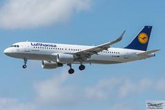 Lufthansa Airbus A320-214(WL) D-AIUI (720275) (Thomas Becker) Tags: lufthansa dlh airbus a320214wl a320214 a320200 a320 a32a 32a daiui staralliance msn6265 080914 davvs 170914 lh839 billund bll fraport flughafen airport aeroport aeropuerto aeroporto fra eddf frankfurt plane spotting aircraft airplane avion aeroplano aereo 飞机 vliegtuig aviao аэроплан samolot flugzeug germany deutschland hessen rheinmain nikon d7200 nikkor 80400g vrii dx raw gps aviationphoto cthomasbecker 170720 arrival geotagged geo:lat=50039523 geo:lon=8596970 aerotagged aero:airline=dlh aero:man=airbus aero:model=a320 aero:series=200 aero:special=wl aero:tail=daiui aero:airport=eddf