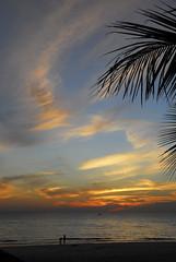 Coucher de soleil à Ngapali beach (BayaBxl) Tags: ngapali beach plage sunset coucherdesoleil sun soleil palmier sable birmanie myanmar burma