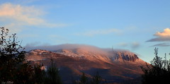 Early Morning Autumn Snow (Lani Elliott) Tags: mountain mountwellington snow trees landscape mountainscape sky bluesky