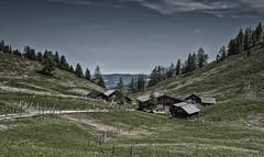2019 - _DSC5278-Wiesleralm (arnpre) Tags: alm pastures alps alpen wiesen meadows mountainfarming relaxing entspannung wandern hiking austria österreich salzburg upperaustria oerösterreich postalm