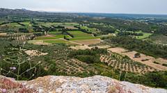 JRCamargue-9.jpg (JRCamargue) Tags: paysage olivier rocher fleur leicaq lesbauxdeprovence camargue provence vupourvous jrcamargue art drapeau peinture
