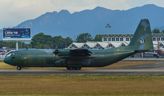 Lockheed C-130H Hercules at the airport (phuong.sg@gmail.com) Tags: four force combat lockheed defence c130 airlift aeronautical war air aeroplane propellers airborne aerospace airplane army airport aircraft aviation airforce armed blue fly flight jet cargo engines delivery defense freight hercules forces plane lift lima military royal landing langkawi logistics weapon transportation
