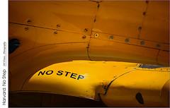 Harvard: No Step (jwvraets) Tags: abstract hamilton mounthope canadianwarplaneheritagemuseum dday 75thanniversary vintage warplane aircraft military harvard trainer opensource rawtherapee gimp nikon d7100 apsdxnikkor70300mm14663nonvr