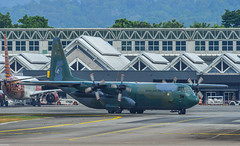 Lockheed C-130H Hercules at the airport (phuong.sg@gmail.com) Tags: aeronautical airlift c130 combat defence force four lockheed propellers war aeroplane aerospace air airborne aircraft airforce airplane airport armed army aviation blue cargo defense delivery engines flight fly forces freight hercules jet landing langkawi lift lima logistics military plane royal transportation weapon