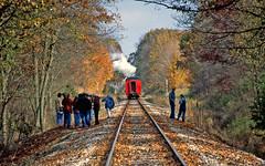 After the Runby (craigsanders429) Tags: littleriverrailroad tracks railroadtracks autumn autumncolors autumnphotography autumnfoliage fallfoliage fall fallcolors steamtrains steamexcursions michiganrailroads