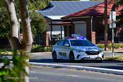 South Australia Police | Holden ZB Commodore (Fleet 503) (emergencyservicesadl) Tags: cops police sapol sapolice trooper policecar policeofficer holdencommodore