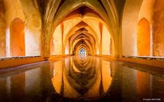 Maria de Padilla Bathrooms - Real Alcázar de Sevilla (cedant1) Tags: realalcazarsevilla real alcazar sevilla séville andalousia andalousie spain espagne españa monument city citytrip palais palace nikon nikond750 afs1635f4 uwa water bath