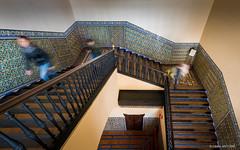 Stairs in Real Alcazar Sevilla (cedant1) Tags: realalcazarsevilla real alcazar sevilla séville andalousia andalousie spain espagne españa monument city citytrip palais palace nikon nikond750 afs1635f4 uwa motionblur blur
