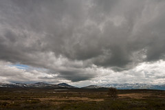 **Cloudy Day** (**klaracolor**) Tags: klara klarathomas klaracolor canon canon40d wideangle norway norge noorwegen grimsdalen sky landscape nature cloud clouds mountain mountains rain oppland dovre tree snow snowymountains breathtakinglandscapes