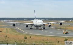 Lufthansa Airbus A340-313E D-AIFC Gander/Halifax (893270) (Thomas Becker) Tags: lufthansa dlh airbus a340313e a340313x a340300 a340 a343 daifc ganderhalifax staralliance msn379 151200 fwwjj 260101 goldhofer ast2 towbarless tow tug pushback fraport flughafen airport aeroport aeropuerto aeroporto fra eddf frankfurt plane spotting aircraft airplane avion aeroplano aereo 飞机 vliegtuig aviao аэроплан samolot flugzeug germany deutschland hessen rheinmain nikon d800 nikkor 70200 vrii fx raw gps aviationphoto cthomasbecker 170728 taxiing geotagged geo:lat=50039523 geo:lon=8596970 aerotagged aero:airline=dlh aero:man=airbus aero:model=a340 aero:series=300 aero:special=e aero:tail=daifc aero:airport=eddf