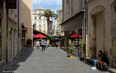 La Rue de la Monnaie (Bernard C**) Tags: canon france occitanie languedoc gard nîmes rue palmier