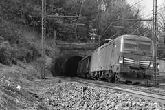 carciano set 2 #19 (train_spotting) Tags: carciano ferrovienordmilano nordcargo dbcargoitaliasrl vectron vectrondc e1910195inc siemens nikond7100