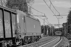 carciano set 2 #20 (train_spotting) Tags: carciano ferrovienordmilano nordcargo dbcargoitaliasrl vectron vectrondc e1910195inc siemens nikond7100