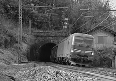 carciano set 2 #18 (train_spotting) Tags: carciano ferrovienordmilano nordcargo dbcargoitaliasrl vectron vectrondc e1910195inc siemens nikond7100