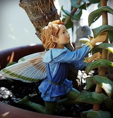 Flower Fairy (claudine6677) Tags: flower fairy fairies elf elfe cicely barker blumenelfe elfenfigur