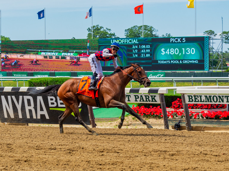 The World's Best Photos of belmont and park - Flickr Hive Mind