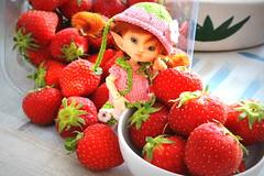 ADAD 11- I like to eat this (cheesemoopsie) Tags: strawberries ruby roro fairyland realpuki tiny