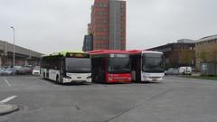 EBS 5054 5087/ Connexxion 5886 Spijkenisse (Erwan Le Biannic) Tags: ebs iveco crossway spijkenisse lijn 403 cng voorneputten connexxion vdl citea lle 104 rnet