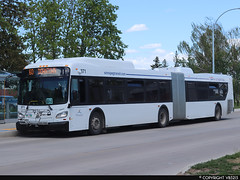 Winnipeg Transit #371 (vb5215's Transportation Gallery) Tags: winnipeg transit 2019 new flyer xd60 xcelsior