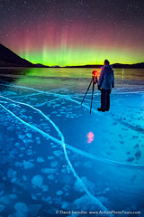 Walking the Ice (David Swindler (ActionPhotoTours.com)) Tags: nightphotography winter canada ice night photographer bubbles crack alberta aurora northernlights auroraborealis lakeabraham icebubbles rockies canadianrockies