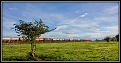 ALONG THE EDGE OF THE FIELD (OLD GIT WITH A CAMERA) Tags: murco puma class60 fueltanks