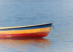 adrift (hennessy.barb) Tags: adrift afloat colorful bright solitary barbhennessy