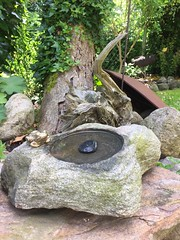 Tränke mit Frosch/Bronze (Carl-Ernst Stahnke) Tags: tränke frosch bronze stein karstenmiller garten sommerfeld