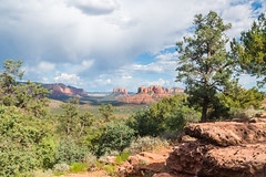 DSC08213-HDR (SpecialK1217) Tags: landscape arizona sedona trees desert nature adventure explore hdr