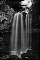 "Ashgill Force (""A.S.A."") Tags: ashgillforce waterfall alston cumbria northpennines england britain countryside longexposure polariser sonya7rmkii 70200 leefilters littlestopper lee105mmpolariser blackwhite mono monochrome greyscale niksoftware silverefex sonysel70200f4g asa2019"